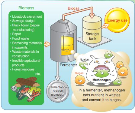 Biomass gasification process - Biogas generated through fermentation of biomass can be used as a fuel for boilers, gas engines, and other applications with Fuji Electric.